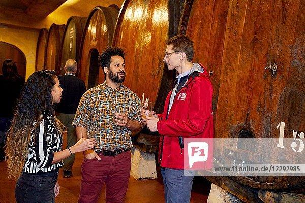 Tourists on a guided tour  Txotx  Cider barrels  Sidreria Petritegi  Astigarraga  Gipuzkoa  Basque Country  Spain  Europe