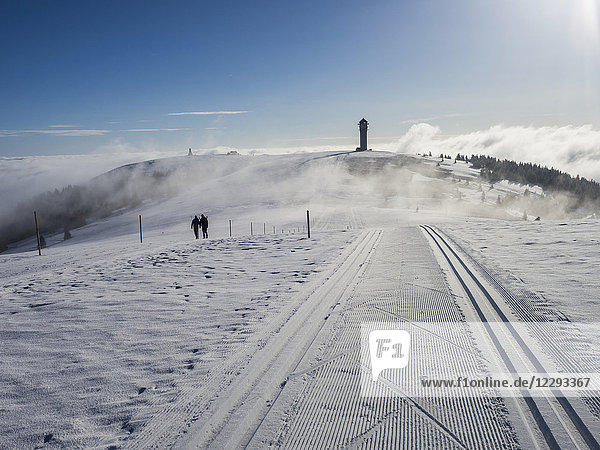 Seebuck summit with Feldberg Tower and two hikers   Black Forest  Germany