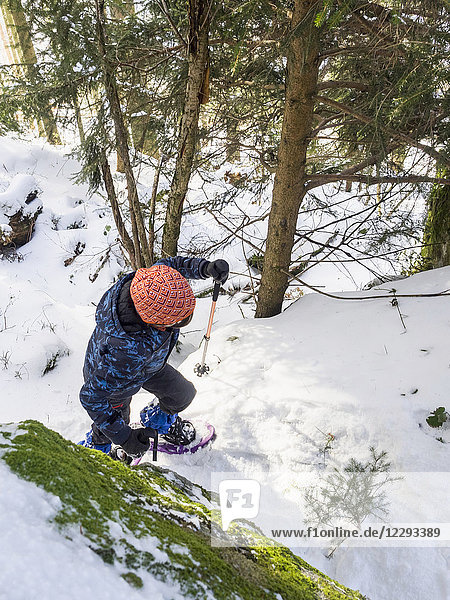 Overhead view of a Girl snowshoeing in Black Forest  Germany  Europe