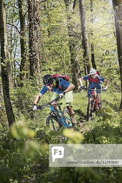 Two mountain bikers speeding on forest path