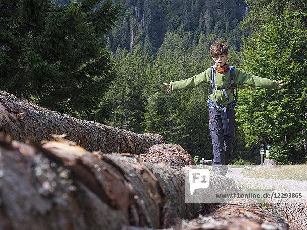 Girl balancing on fallen tree trunk  hiking in black forest  Feldberg  Baden-Württemberg  Germany
