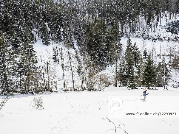 Girl ski walking with lush foliage in background in Black Forest  Germany  Europe