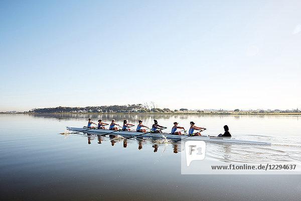 Weibliches Ruderteam Ruderschädel auf ruhigem See
