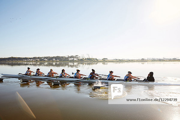 Weibliches Ruderteam Ruderschädel auf sonnigem See