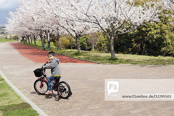 Full length portrait of boy riding bicycle on footpath in park
