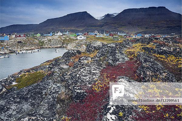 Colorful rocks along remote fishing village  Disko Island  Greenland