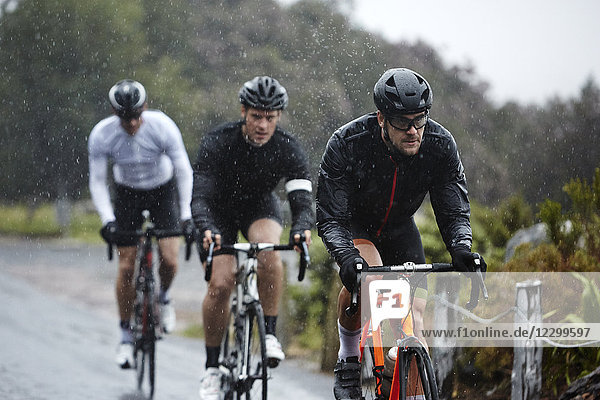 Dedicated male cyclists cycling on rainy road