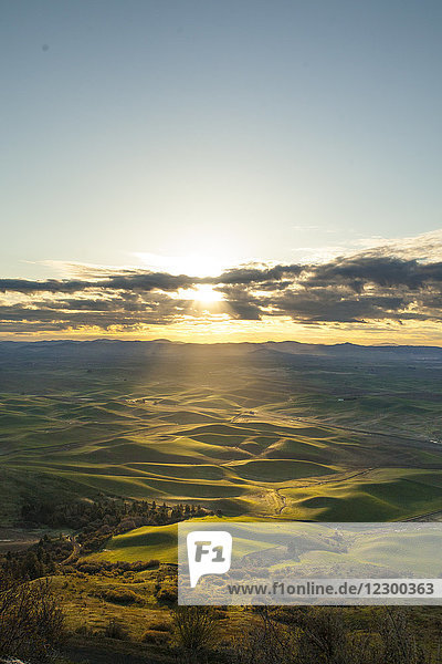 Scenery with rolling hills at sunrise  Steptoe Butte State Park  Palouse  Washington State  USA