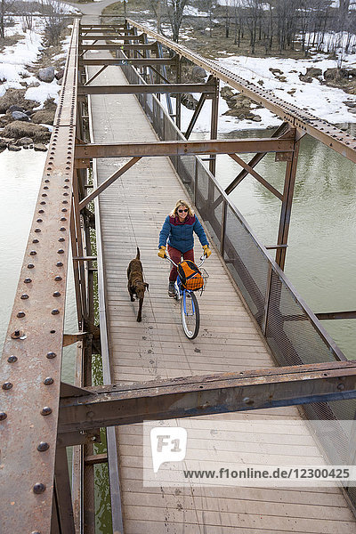 Pet dog running beside adult woman riding bicycle across bridge over Animas River during winter  Durango  Colorado  USA