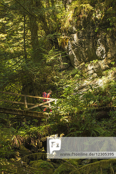 A mid adult woman hikes over a wooden bridge along the West Coast Trail  Pacific Rim National Park on Vancouver Island  British Columbia  Canada