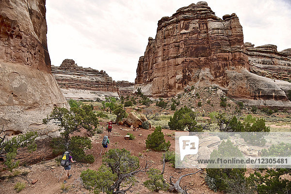 Distant view of backpackers hiking canyons of The Maze section of Canyonlands National Park  Moab  Utah  USA