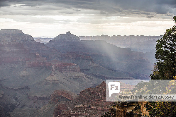 Scenic view of Grand Canyon and surrounding landscape of Grand Canyon National Park  Arizona  USA