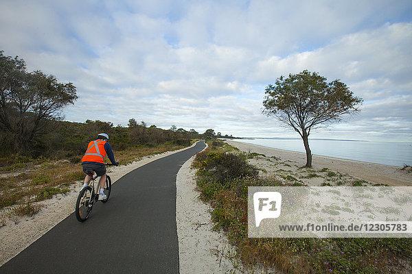 Rear view shot of man riding bicycle along Busselton-Dunsborough Bike Walk Path along coastline  Cape Naturaliste  Western Australia