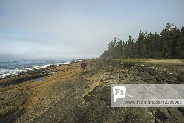 Distant view of single female backpacker hiking along rocky coastline  West Coast Trail  Pacific Rim National Park on Vancouver Island  British Columbia  Canada