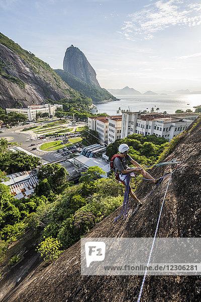 Adventurous man rock climbing Babilonia Mountain (Morro da Babilonia) near the Sugarloaf Mountain (Pao de Acucar) in Urca  Rio de Janeiro  Brazil