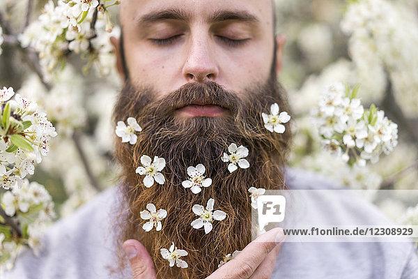 Porträt des Hipsters mit weißen Baumblüten im Bart