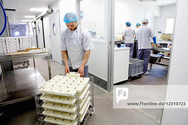 Käser  der Käse verpackt  um ihn an Lieferanten zu versenden