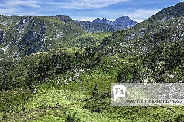 France  Ariege  Pyrenees  landscape near peak Ruhle