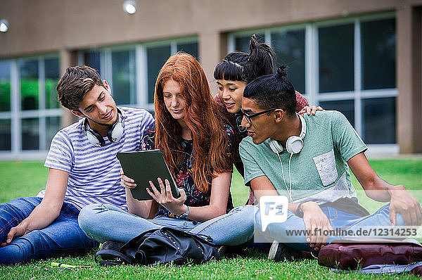 College students sitting on lawn looking at digital tablet together