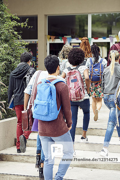 College students walking toward campus building  rear view
