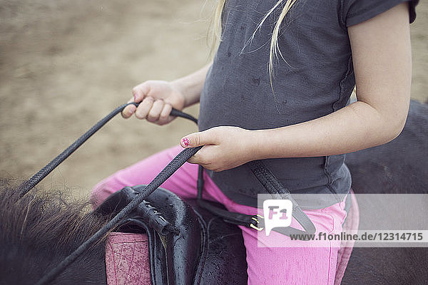 Close-up of girl (4-5) sitting on pony