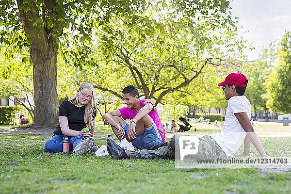 Teenage girl and teenage boys (14-15) sitting in park