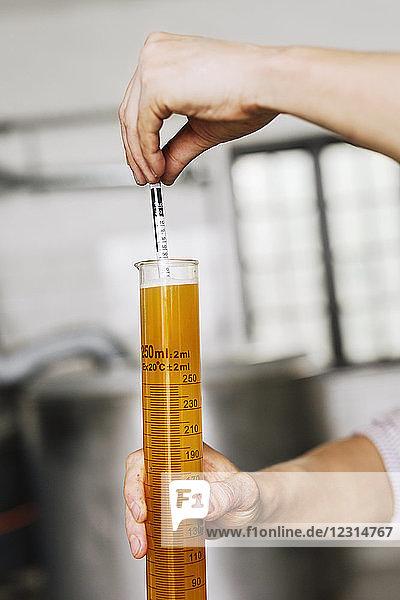 Brewery worker examining beer in beaker Brewery worker examining beer in beaker