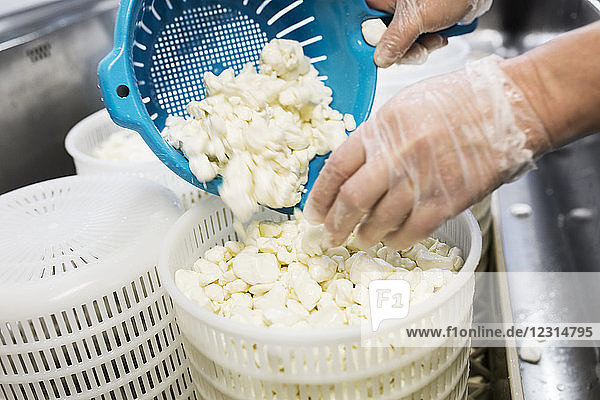 Close-up of woman preparing cottage cheese in commercial kitchen