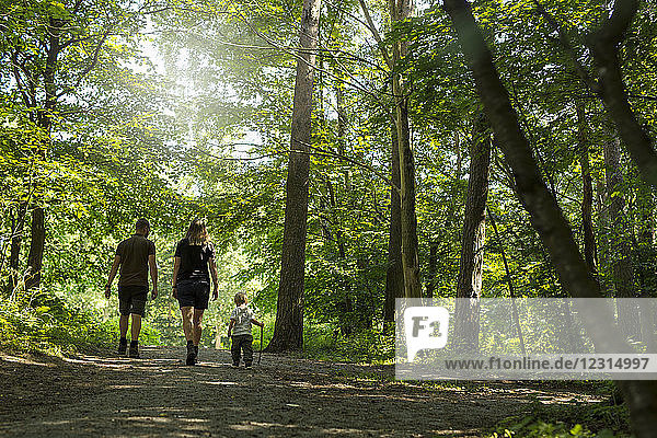 Son (2-3) with parents walking in forest
