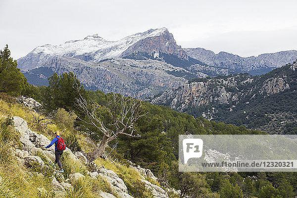 Serra de Tramuntura  hiker on a trail above Soller  Majorca  Balearic Islands  Spain  Mediterranean  Europe