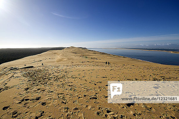 Pilat Dune in Test-de-Buch  at 110 m high  the highest sand dune in Europe  Nouvelle Aquitaine  France  Europe
