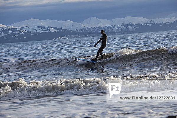 Surfer riding waves in Kachemak Bay  South-central Alaska; Homer  Alaska  United States of America