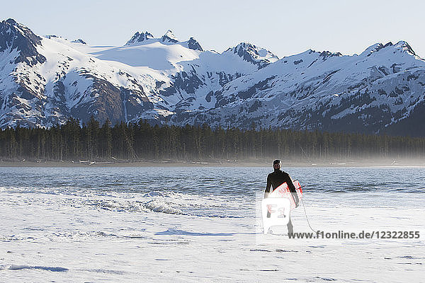 Surfer standing in the ocean along the Kenai Peninsula Outer Coast  South-central Alaska; Alaska  United States of America