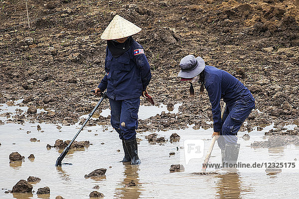 Women using a metal detector while clearing landmines in a field near Phonsavan; Xiangkhouang  Laos