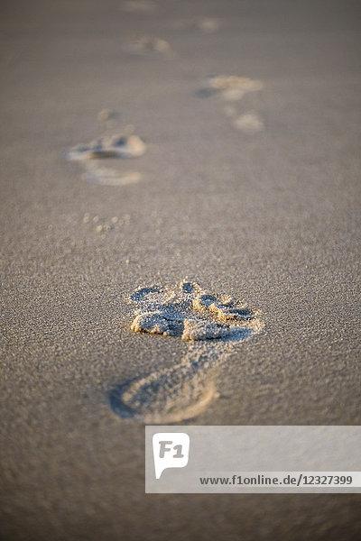Fußspuren im Sand  Sylt  Schleswig-Holstein  Deutschland  Europa