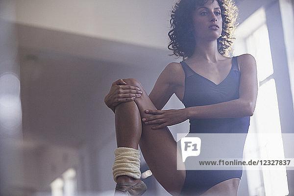Dedicated young female dancer stretching leg in dance studio