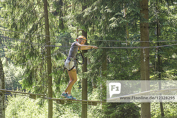 France  Auvergne  Allier  Adventure park on the Sioule valley.