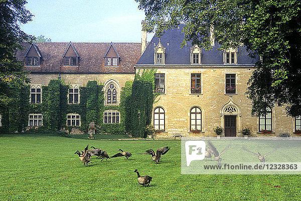 France  Bourgogne Franche Comte  Cote d'or (21)  La Bussiere sur Ouche  La Bussiere abbey