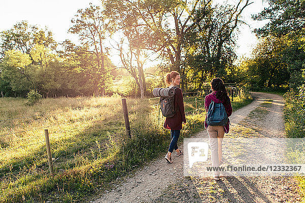 Full length rear view of mother and daughter hiking on dirt road in forest