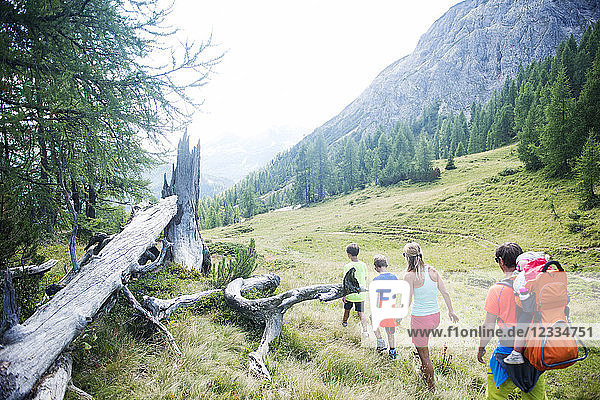 Family hiking in alpine meadow