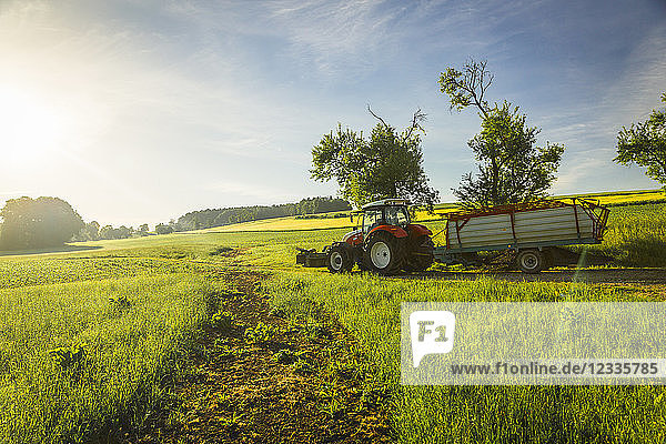 Austria  Innviertel  fieldscape with tractor at morning light