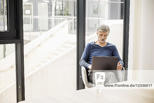 Mature man sitting in his office  using laptop
