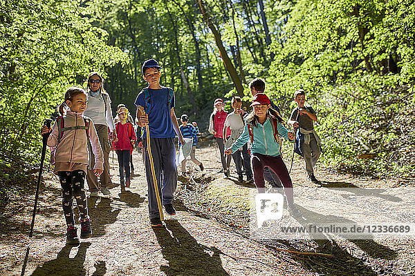 Kids on a field trip in forest