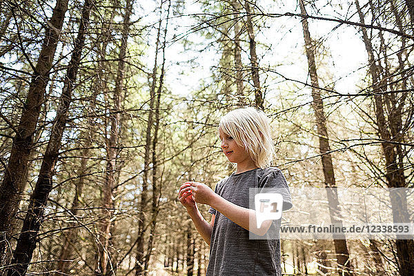 Blonde haired boy in forest