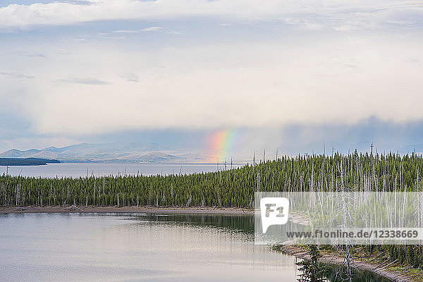 See- und Waldlandschaft mit Regenbogen am Horizont  Yellowstone-Nationalpark  Wyoming  USA