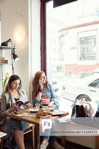 Frauen lesen und plaudern am Handy im Cafe