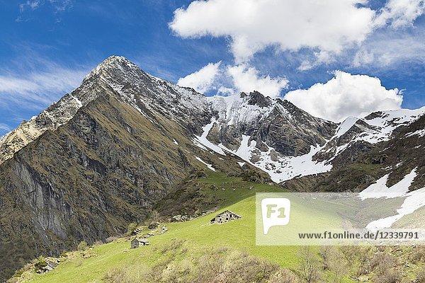 View of the Monte Tagliaferro and the Campo Alp (Alagna Valsesia  Valsesia  Vercelli province  Piedmont  Italy  Europe).