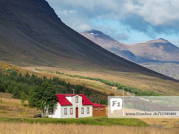 House in valley Skidadalur near Dalvik. europe  northern europe  iceland  september.