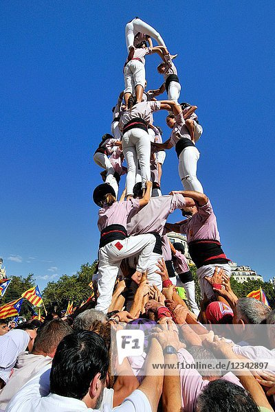 Political demonstration for the independence of Catalonia. Human towers. October 2017. Barcelona  Catalonia  Spain