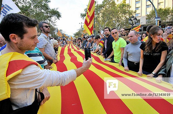 Political demonstration for the independence of Catalonia. Senyera. Catalan flags. October 2017. Barcelona  Catalonia  Spain